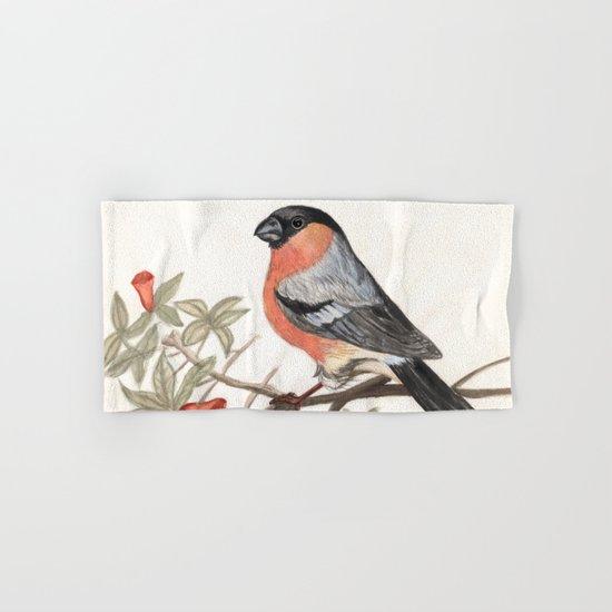 Eurasian bullfinch bird Hand & Bath Towel