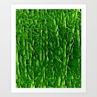 vegetable Art Prints featuring green vegetable by clemm