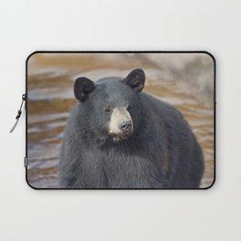 Black Bear (Ursus americans) in water Laptop Sleeve