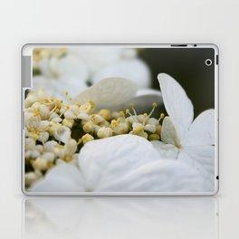 Arboretum 1 Laptop & iPad Skin