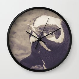 Adorable African Penguin Series 4 of 4 Wall Clock
