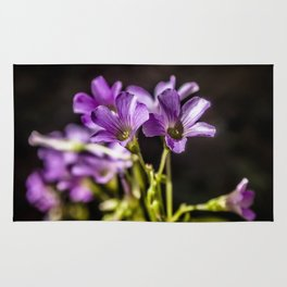 Springtime Blooms Rug