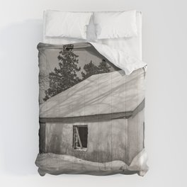 Abandoned Winter Country House Comforters