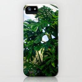 indoor jungle iPhone Case