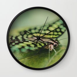 Dotted Insect Wall Clock