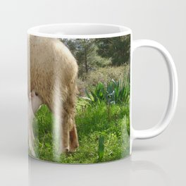 Lamb Suckling From An Ewe Coffee Mug