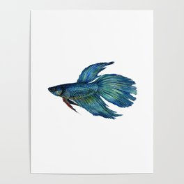 Mortimer the Betta Fish Poster