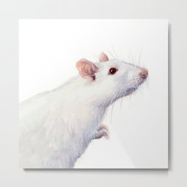 White Rat Watercolor Albino Rat Animal Metal Print