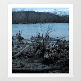 Violet's Lock Driftwood Art Print