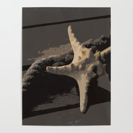 Starfish and boat rope on the pier - dark background - #Society6 - #buyart Poster