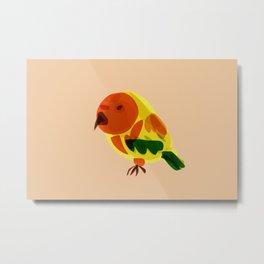 Baby Macaw Metal Print