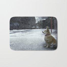 The dry dog Bath Mat