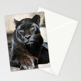 Black Leopard Stationery Cards