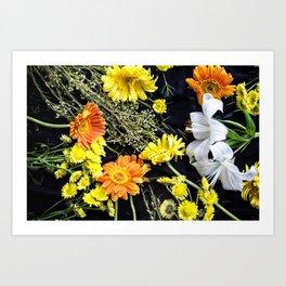 Fresh blooms on black Art Print
