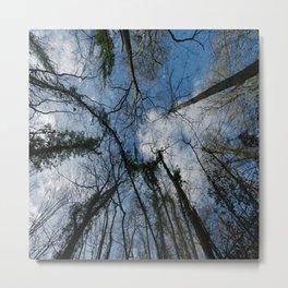 Loamhole Dingle Treetops Metal Print