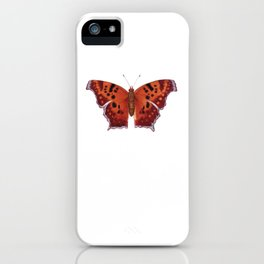 Question Mark (Polygonia interrogationis) iPhone Case