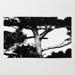 Kohama pine Rug