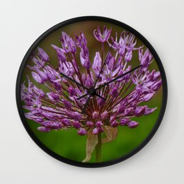 Passion for Allium Wall Clock