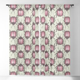 Pink Beetle With Dots Insect Art Sheer Curtain