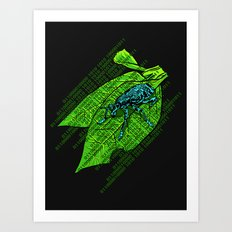 Leap Year Bug Art Print