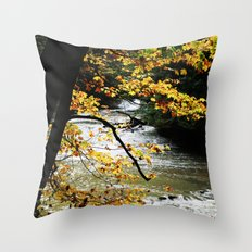 Runs through it. Throw Pillow