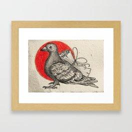 A carrier pigeon Framed Art Print