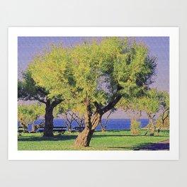 Tamarisk Trees Overlooking the Ocean Art Print