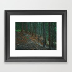 into the woods 02 Framed Art Print