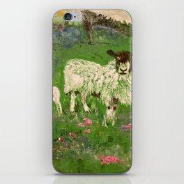 Lambs in the Meadow iPhone Skin