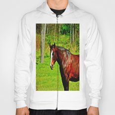 Equine Beauty Hoody
