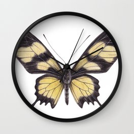 Butterfly Painting | Hahnel's Amazonian Swallowtail | PARIDES HAHNELI | Nature | Animal Art Wall Clock