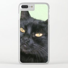 Relaxed Black Cat Portrait  Clear iPhone Case