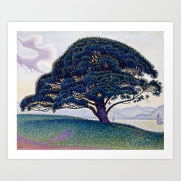The Bonaventure Pine Art Print