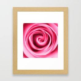 Pink rose petals swirls Framed Art Print