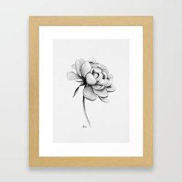 Peony Flower, Black and White Framed Art Print