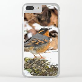 Male Varied Thrush Amid the Snow and Seed Clear iPhone Case