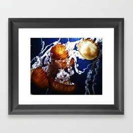 One Bright Jelly Framed Art Print