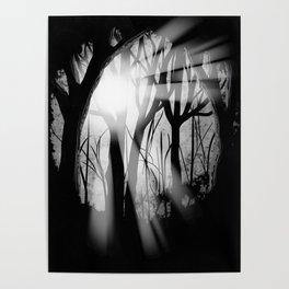 """Forest Light"" | Digital Art Poster"