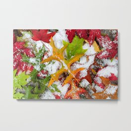Winter and Autumn Metal Print
