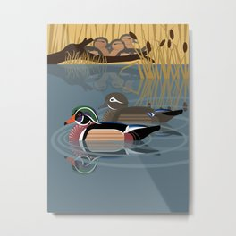 Wood duck Metal Print