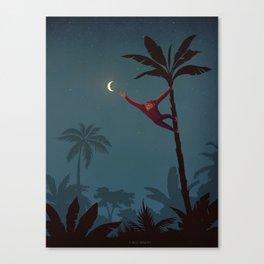 Aim High Canvas Print