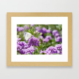 Butterfly and purple flowers Framed Art Print