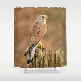 Perched Raptor Shower Curtain