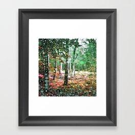 :: Walk in the Woods :: Framed Art Print