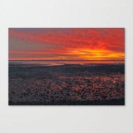Fire in the Sky- Alaska Canvas Print