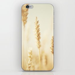 the cornfield ... iPhone Skin