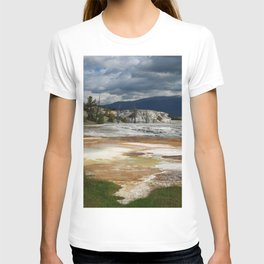 Grassy Spring View T-shirt
