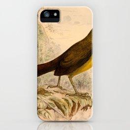 Malia grata recondita 18981 iPhone Case
