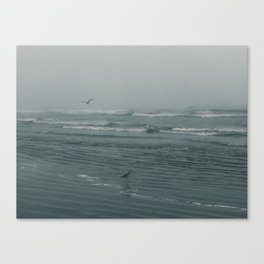 Galveston, Texas. 2020 Canvas Print