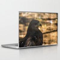 hawk Laptop & iPad Skins featuring Hawk by Veronika